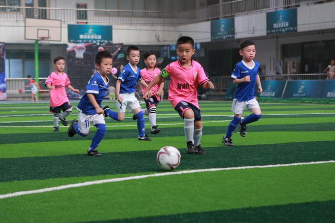 温州市第八届幼儿足球联赛——我园足球小将闯...